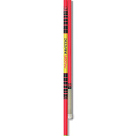 gill pacer mystic pole - 10' 70lb